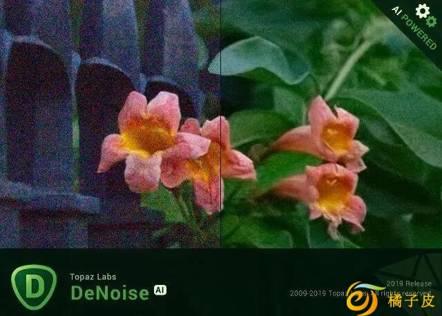 Topaz DeNoise AI 2.3.1智能图片降噪软件
